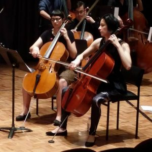 Team Cello in action